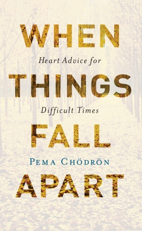 WHEN THINGS FELL APART: memories from our Pema Chödrön decades